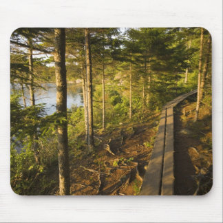 A wooden walkway in Acadia National Park Maine Mouse Mat