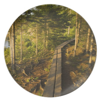 A wooden walkway in Acadia National Park Maine Plate