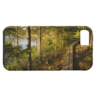 A wooden walkway in Acadia National Park Maine Tough iPhone 5 Case