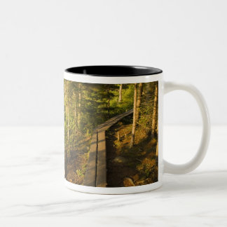 A wooden walkway in Acadia National Park Maine Two-Tone Coffee Mug