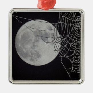 A world Wide Web Ornaments