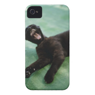 A yawning cat. Case-Mate iPhone 4 case