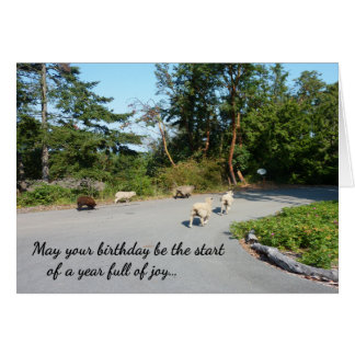 A Year Full of Joy...Religious birthday Card