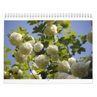a year of flowers calendar
