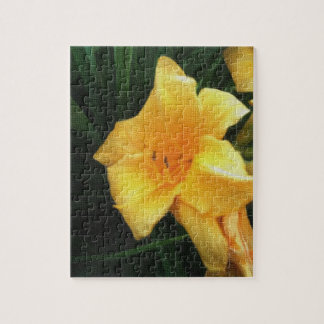 A Yellow Lilly Puzzle