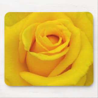 A yellow rose of friendship mouse mat