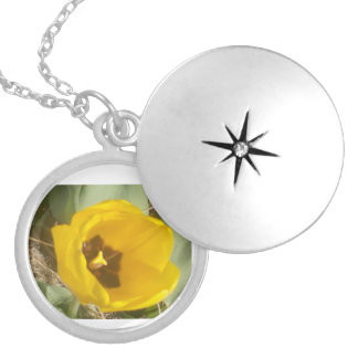 A Yellow Tulip In The Sun Silver Plated Necklace