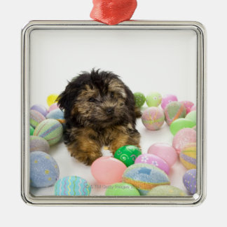 A Yorkie-poo puppy and Easter eggs. Christmas Ornament