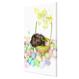 A Yorkie-poo puppy encountering an Easter basket Stretched Canvas Prints