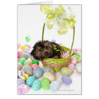 A Yorkie-poo puppy encountering an Easter basket Card