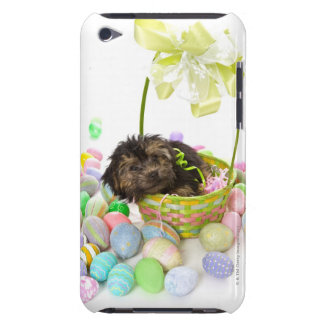A Yorkie-poo puppy encountering an Easter basket iPod Case-Mate Cases