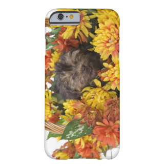 A Yorkie-Poo puppy in a basket of artificial Barely There iPhone 6 Case