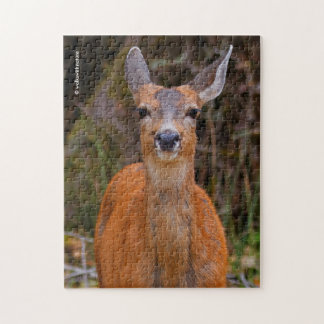 A Young Black-Tailed Deer Smiles Puzzles