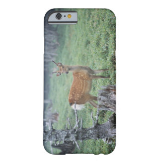 A young deer in a forest clearing barely there iPhone 6 case