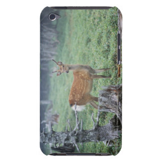A young deer in a forest clearing barely there iPod cases