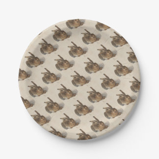 A Young Hare Paper Plate