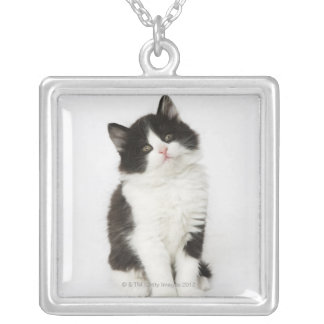 A young kitten sitting looking into the camera custom jewelry