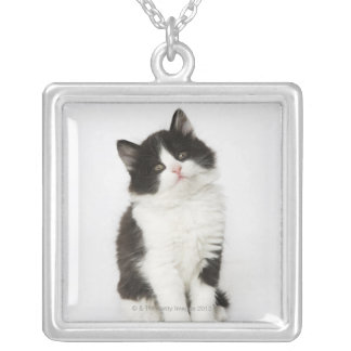A young kitten sitting looking into the camera square pendant necklace