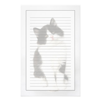 A young kitten sitting looking into the camera stationery