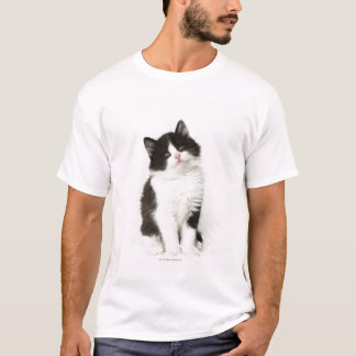 A young kitten sitting looking into the camera. T-Shirt