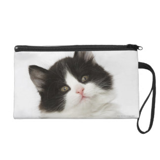 A young kitten sitting looking into the camera wristlet