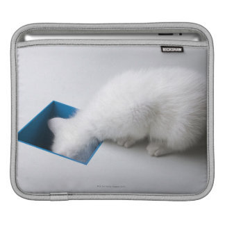 A Young Kitten Stretches His Head Down a Square iPad Sleeve