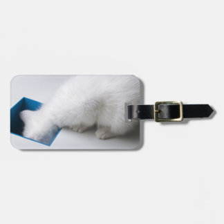 A Young Kitten Stretches His Head Down a Square Luggage Tag
