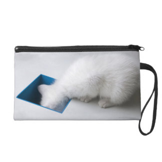A Young Kitten Stretches His Head Down a Square Wristlet