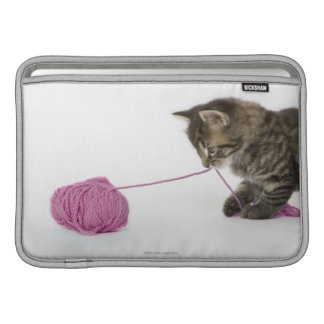 A young tabby kitten playing MacBook sleeve