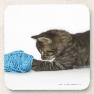 A young Tabby kitten playing with wool. Coaster