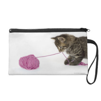 A young tabby kitten playing wristlet clutch