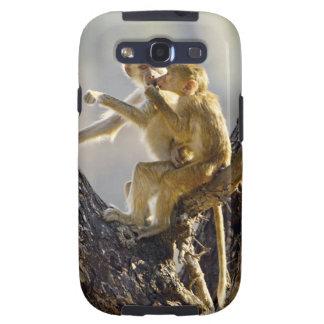 A young Yellow baboon  (Papio cynocephalus) Galaxy S3 Case