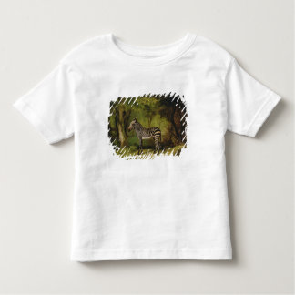 A Zebra, 1763 (oil on canvas) Toddler T-Shirt
