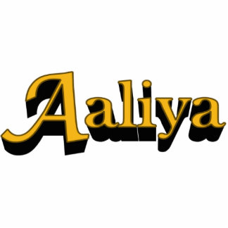 Aaliya Acrylic Gift Photo Sculptures