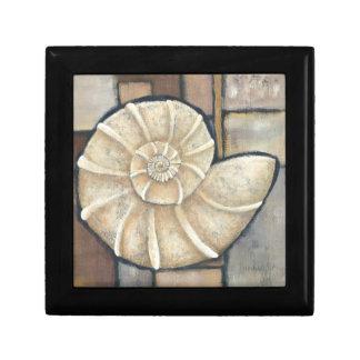 Abalone Shell Small Square Gift Box