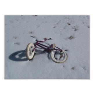Abandoned Bicycle Art Photo