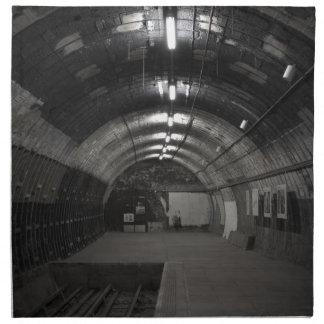 Abandoned Station Napkin