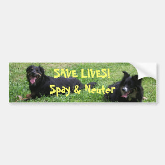 Abbey and Roxy say: SAVE LIVES! Spay & Neuter Bumper Sticker