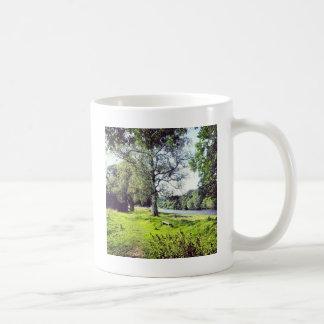 Abbotsford Basic White Mug