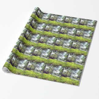 Abbotsford Wrapping Paper