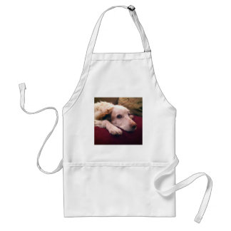 Abby Brittany Spaniel Adult Apron