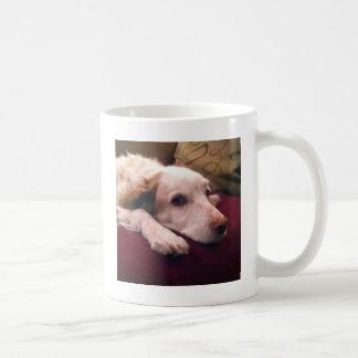 Abby Brittany Spaniel Classic White Coffee Mug