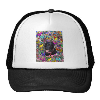 Abby in Butterflies - Black Lab Dog Hat