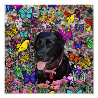 Abby in Butterflies - Black Lab Dog Poster
