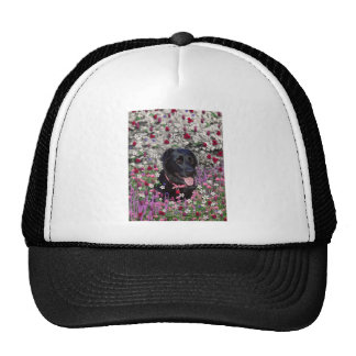Abby in Flowers – Black Lab Dog Mesh Hats