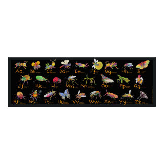 ABC Whimsical Bugs Poster