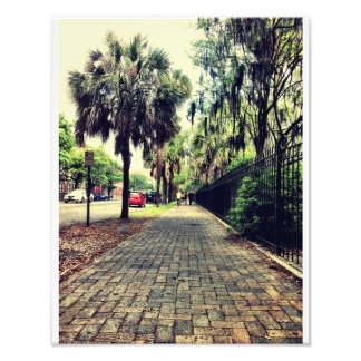 Abercorn Street At Colonial Cemetery Art Photo