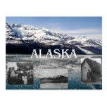 ABH Alaska Postcard