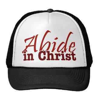 Abide in Christ Cap