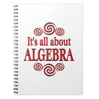 About Algebra Notebooks